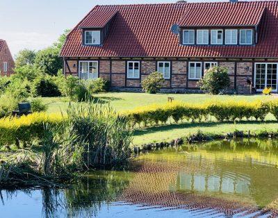 Storchennest – Komfort-Ferienhaus im Grünen mit Spielplatz in Kalkhorst